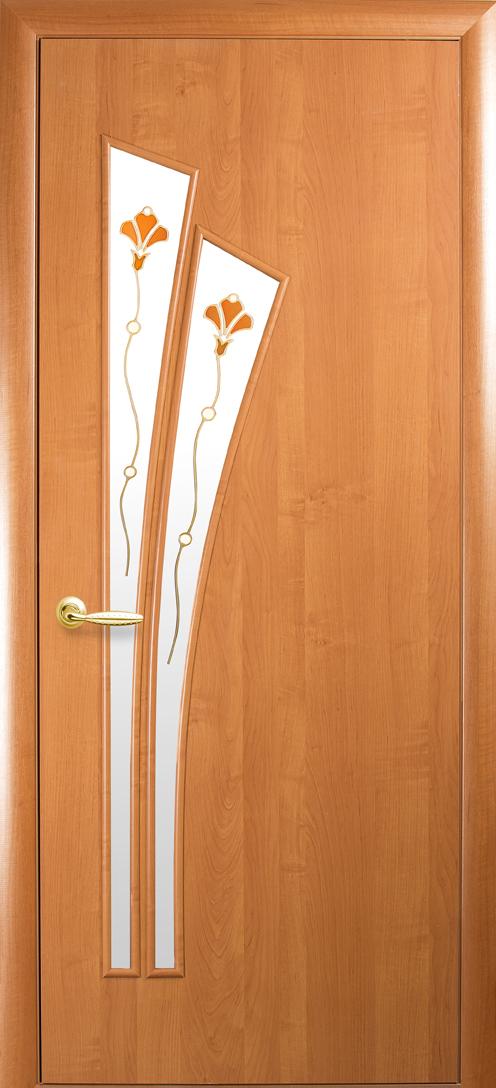 фото полотна двери
